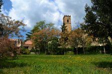 Església de Sant Muç darrera del prat florit.