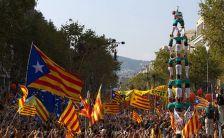 Manifestació de la Diada a Barcelona l'any 2014.