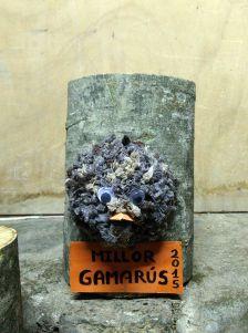 Premi El Gamarús.