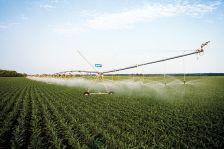 la Comunitat de Regants de la Riera de Vallforners reduirà la superfície a regar, aplicarà restriccions en el servei de l'aigua i, a més, imposarà multes del 400% sobre el valor de l'aigua per aquells que reguin més del compte.