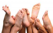 L'Ajuntament proporciona un nou servei de podologia pel municipi.
