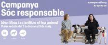 Identificar i esterilitzar el teu animal és beneficiós