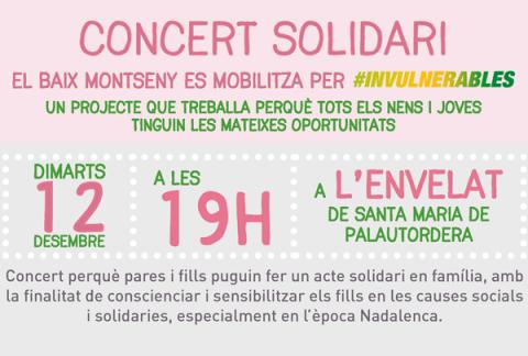 banner concert solidari